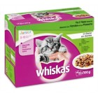 WHISKAS MP JUNIOR VIS/VLEES IN GELEI 12X100GR